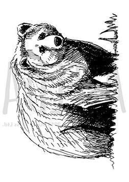 Azeeda A7 'Grizzly Bear' Unmounted Rubber Stamp