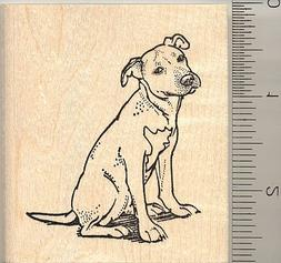 American Pit Bull Terrier Rubber Stamp