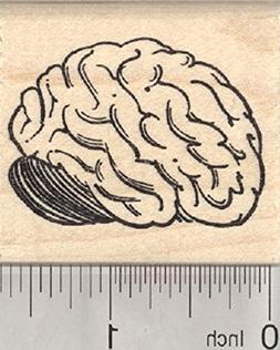 Brain Rubber Stamp