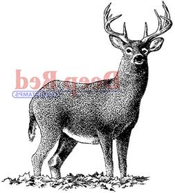 Deep Red Stamps 4x505167 Buck Deer Rubber Stamp