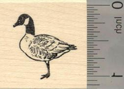 Canadian Goose Rubber Stamp, Small D25121 WM