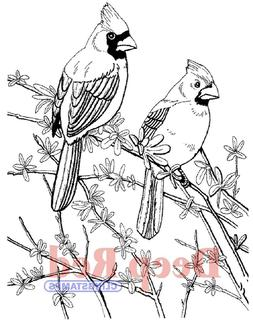 Deep Red Stamps Cardinals Rubber Stamp
