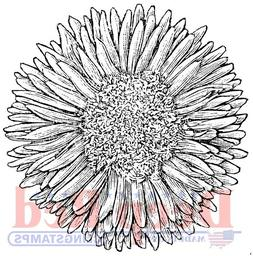 Deep Red Stamps Chrysanthemum Rubber Cling Stamp