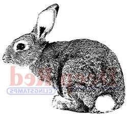"""Deep Red Cling Stamp 2""""X2""""-Bunny Rabbit"""