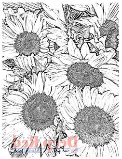 "Deep Red Cling Stamp 3""X4""-Sunflowers Background"