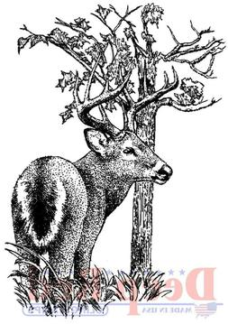 Deep Red Cling Stamp 2.25X3-Whitetail Buck