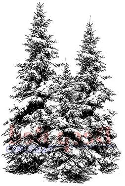 Deep Red Cling Stamp 2X3-Winter Pines