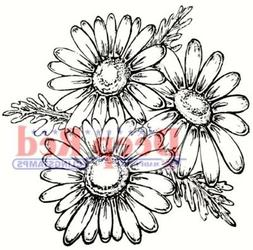 Deep Red Stamps Daisies Rubber Cling Stamp