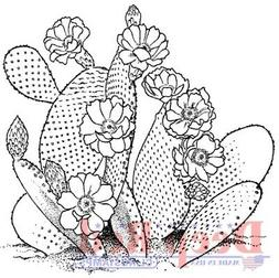 Deep Red Stamps Desert Cactus Rubber Cling Stamp