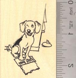 Dog Playing April Fools Day Prank with Fake Poo Rubber Stamp