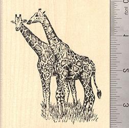 Giraffe Pair Rubber Stamp, African Wildlife, Large