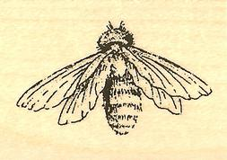 Honeybee BEE Wood Mounted Rubber Stamp IMPRESSION OBSESSION