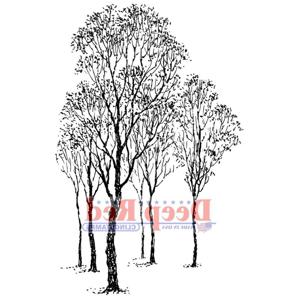 cling winter trees