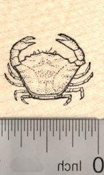 Small Crab Rubber Stamp