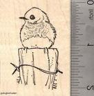 Eastern Bluebird Rubber Stamp, American Thrush Family Blue B