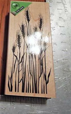 Hero Arts ~ K5617 TALL WHEAT ~ Mounted Rubber Stamp
