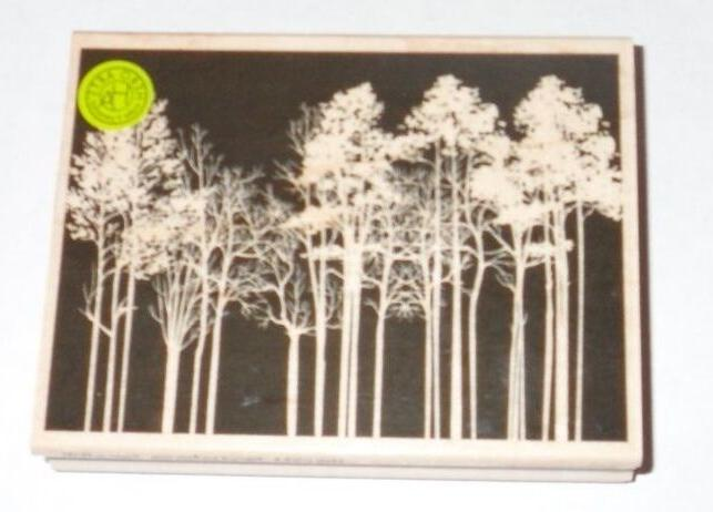 Hero Arts Mounted Rubber Stamp 4.25X3.25-Forest Background