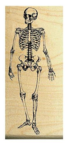 "P10 Halloween skeleton rubber stamp 2.5x1.25"" WM"