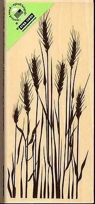 HERO ARTS rubber stamp - TALL WHEAT- wood mounted Fall Harve