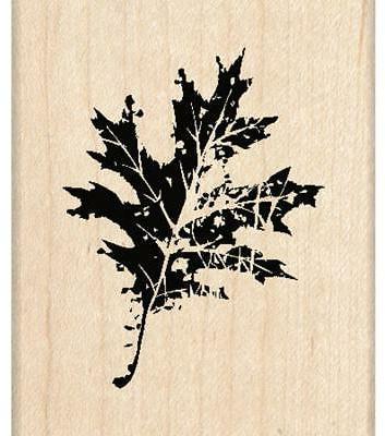 wood mounted rubber stamp g oak leaf