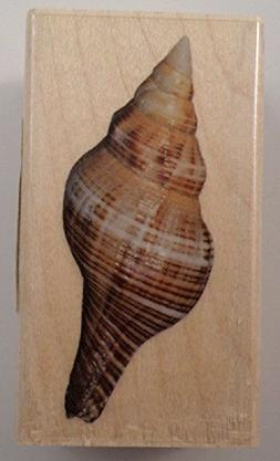 Inkadinkado Nautical Ocean Sea Shell Spiral Conch Wooden Rub