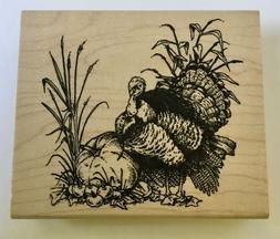 NEW Inkadinkado Rubber Stamp Thanksgiving Turkey Pumpkin App