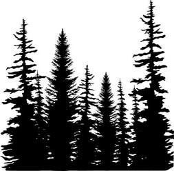 Pine Trees Cover a Card Unmounted Cling Rubber Stamp