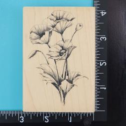 Poppies Flowers Inkadinkado Poppy Pencil Sketch Wood Mounted
