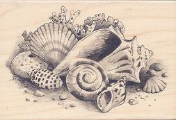 "Sea Shells Beach  Inkadinkado Rubber Stamp s 3"" x 2.25""  w/m"