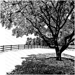 TREE Cover A Card Background Cling Rubber Stamp Impression O