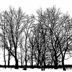 Tree Line Cover A Card Background Unmounted Rubber Stamp Imp